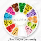 Nail polymer clay sticks for nail art FIMO rods