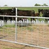 steel removable cattle fence post from QDYC