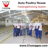 South Africa Chicken shed Installation Project Chicken Equipment For Poultry Farm House Automatic Feeding System