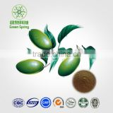 Olive Leaf Powder Extract.