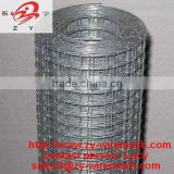 Hot galvanized zinc coated Welded Wire Mesh ( best quality , low price , 13 years factory )