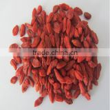 good quanlity goji berries, new crop goji berries, fresh goji berries, dried goji berries