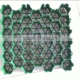 Plastic grass grid/plastic drainage and green black grass grid sheet mould/grass grid mould