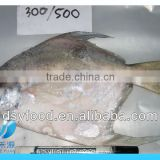 300-500g Frozen whole silver pomfret fish