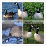 hot selling America and Canada plastic snow goose decoy