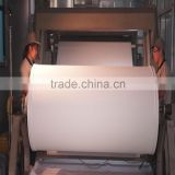 Thin Canvas Polyester Sail Fabric Printing Roll With HP EPSON CANON ROLAND Machines
