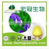 Manufacturers Offer Radix Scutellariae Extract Powder Baicalin