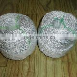 Re: Manu and sell series of rope, line ,twines ,nets ,floats of nylon, pp, pe and polyester