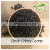 PP bag Packaging Product type black matpe bean for sale, canned black beans