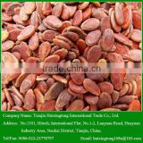 2014 Chinese New Crop Small Size Red Watermelon Seeds for Sale