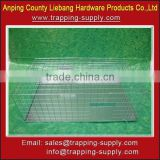 New Products 2014 Foldable Live Bird Trap Cage for Pigeon & Crow & Magpie