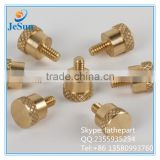 China Supplier Brass Thumb Screw +8613580993760
