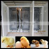 Long time working egg incubator for chicken incubator                                                                         Quality Choice