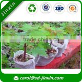 Hotsale 100% PP Non woven Fabric for Biodegradable Seedling Bags or Tree Planting Fabric