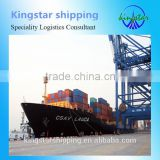 freight forwarder competitive sea freight shipping from guangzhou china to Alexandria Egypt