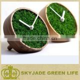 Newest and softest artificial grass for football