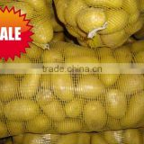 Supply/Export Organic Fresh Ginger