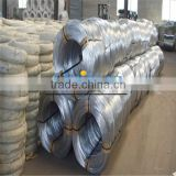 Electro Galvanized Wire (Haiyue Factory)