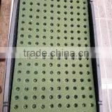hydroponic seeding growing sponge for vegetables