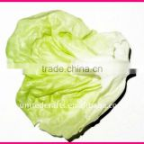 HOT SELLING-2011 New Design Most Popular Natural artificial cabbage
