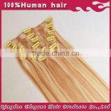 Hot sale unprocessed wholesale argentina hair clip in straight