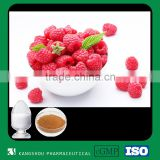 Natural Raspberry extract powder Fructus Rubi Raspberry Ketone                                                                         Quality Choice