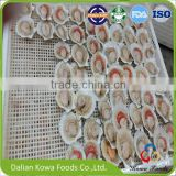 Frozen Scallops with Top Quality and Good Price