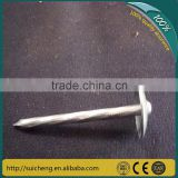 Guangzhou Umbrella Roofing Nails/ Galvanized Twisted Shank Roofing Nails/ Concrete Nails