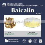 medical grade / pharmaceutical grade 85% baicalin powder