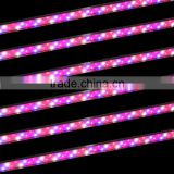 marshydro grow led light full spectrum tube led grow light bar for tomato seed for greenhouse Hydroponics