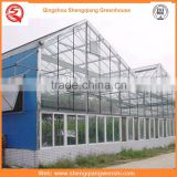 China supplier multi-span glass 6.4m agriculture galvanized steel frame greenhouses for hot sale
