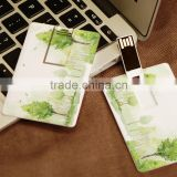 Full Capacity Credit/ Name/ Birthday Card USB Disk wholesale
