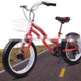 "Mighty 20"" Fat Bike Children's Bike women bicycle 20""x 4.0"" Oversized Tyres FREE LIGHT & CHAIN"