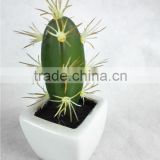 mini potted cactus bonsai plastic table plant for decor