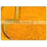 Pure Turmeric powder exporters