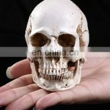 Custom Decorative Polyresin Resin Skull 9*9.5cm
