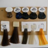 Detachable Hair Color Chart