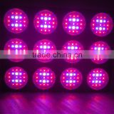 New Arrival and Hot Sale 580W high lumen 600w led grow lightled hydroponic grow light for greenhouse