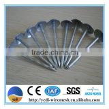 common nails/Electric Galvanized Roofing nail /zinc galvanized nails/electric nail drill dr 288