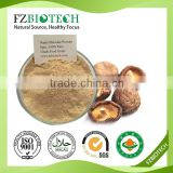 High Nutrition Lentinula edodes powder dried Shiitake Powder Pure Nature Mushroom Powder