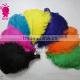 Wholesale fashion multicolor decotation ostrich feather for party and wedding
