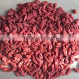 Manufactory Supply Bulk Goji Berries