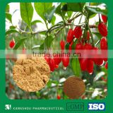 organic goji fruit extract Lycium barbarum polysaccharide (LBP) extract