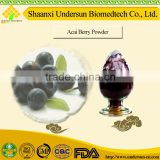 China Supplier Wholesale Flavoring Agent Natural Acai Berry Extract Powder