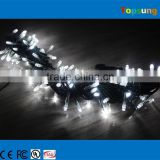 Durable 24v white cotton ball patio party string lights 10meter                                                                                                         Supplier's Choice