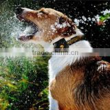 Dog GPS Locator Pet gps tracker TK108 waterproof tracking device with With Google maps on Mobile Phone