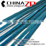 ZPDECOR Wholesale Selected Prime Quality Bleached Dyed Turquoise Ringneck Pheasant Tail Feathers for Parties