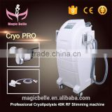 CE Certificated Multipolar RF Skin Wrinkle Removal Machine Cool Cryo Shape Slimming Machine from China
