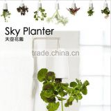 Plastic Sky Planter Creative Decorative Home Mini Sky Garden Flower Pot Beauty Sky Planter
