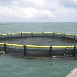 Deep Sea Aquaculture Cage Polyethylene Floating Cage